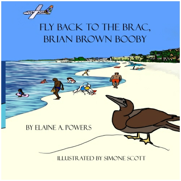 image of book cover of a brown booby bird in cayman brac