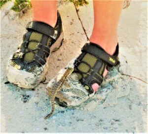 two feet in sneakers, on a beach, with a Bahamian curly-tail lizard on left shoe