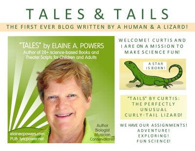 graphic image of Elaine Powers for blog