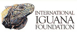 logo of Int'l Iguana Foundation, photo of iguana face