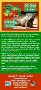infographic listing 60 iguana foods