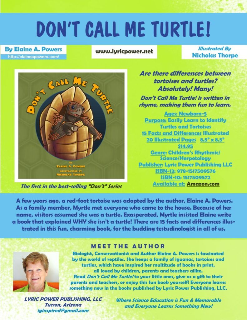 infographic for children's book Don't Call Me Turtle!