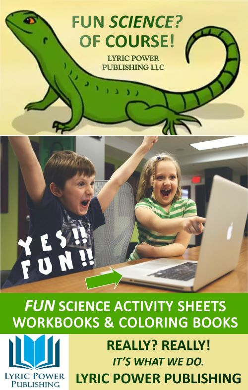 infographic about fun science education workbooks