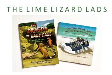 book covers lime lizard lads