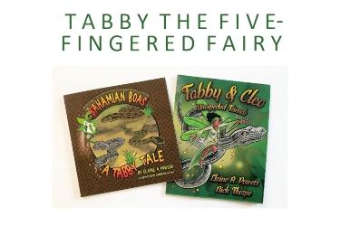 book covers tabby fairy