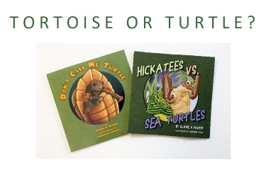 book covers turtle or tortoise