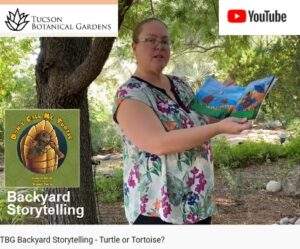 image of woman reading book at Tucson Botanical Gardens