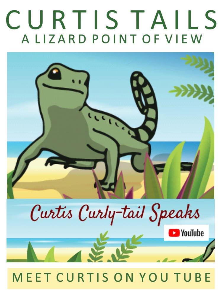 "Did You Know There is More Than One ""English?"" by Curtis Curly-tail Lizard"