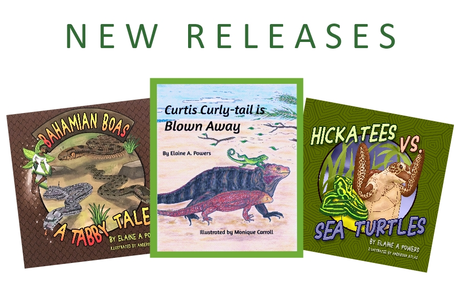 New Releases 2 10.1.20
