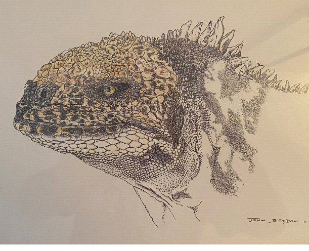 John Bendon's Works of Art Are Also Important Scientific Records
