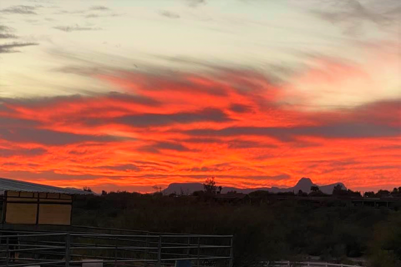 What Makes Sunsets So Spectacular?
